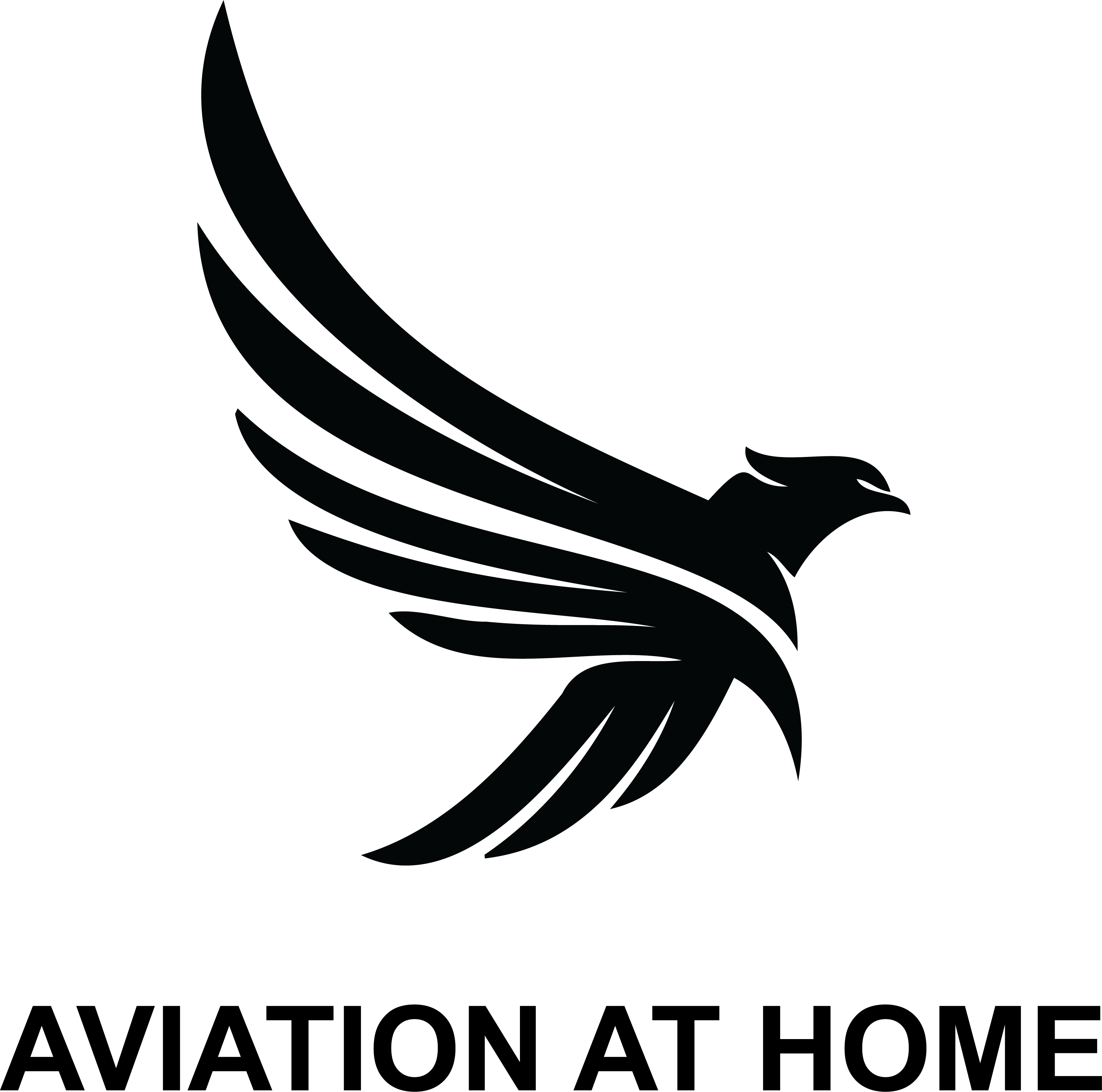 Aviation at Home